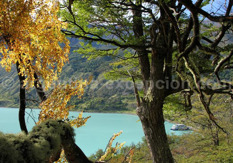Vue sur la baie de las Vacas, lac Argentino