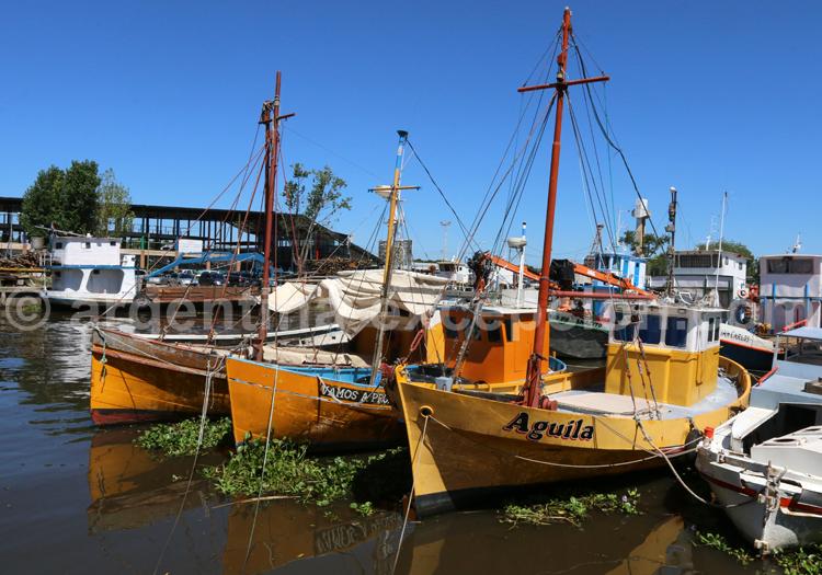 Tigre, Delta de Parana