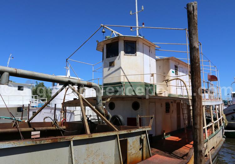 Bateau, Delta du Parana
