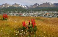 Ushuaia and the Tierra del Fuego