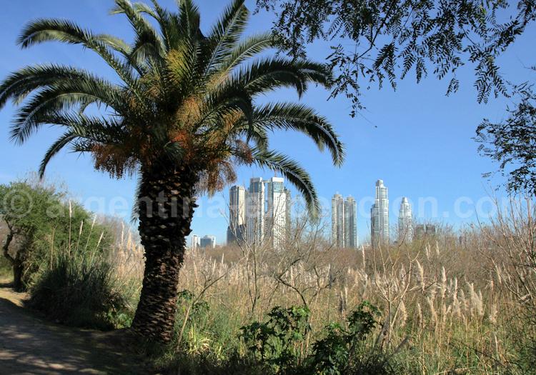 Ecrin de nature au coeur de Buenos Aires