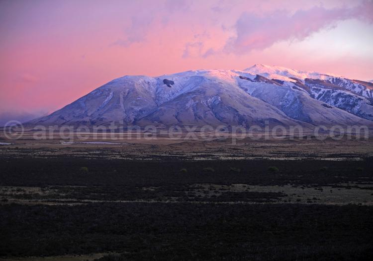 Steppe patagone, Argentine