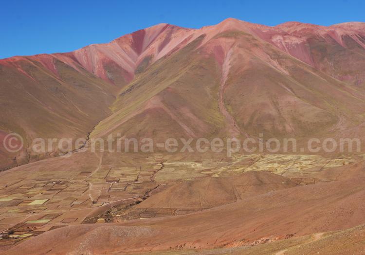 Province de Salta, Argentine