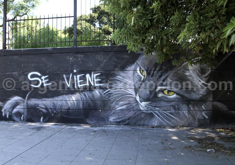 Buenos Aires, Toile urbaine
