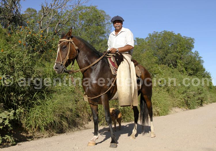 Gaucho sur sa monture