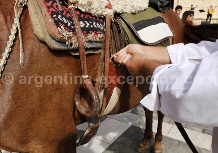 Gaucho sellant sa monture