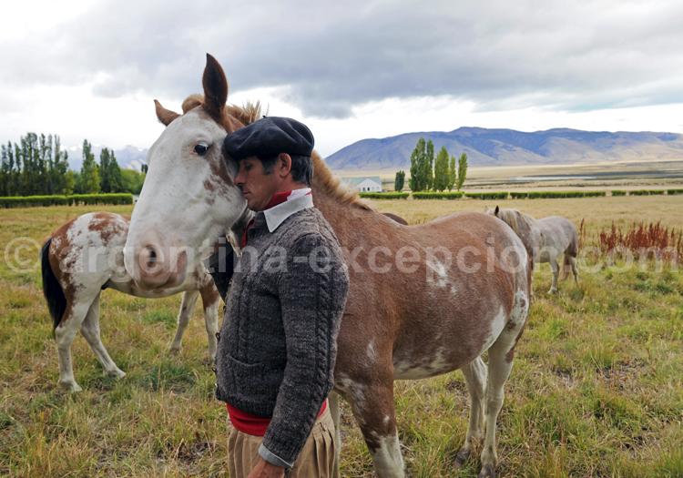 Le gaucho et sa monture