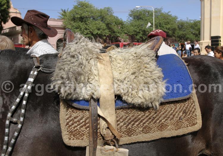 Selle de cheval, Argentine
