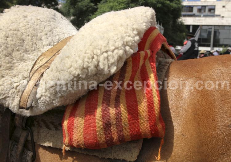 Selle en laine de mouton