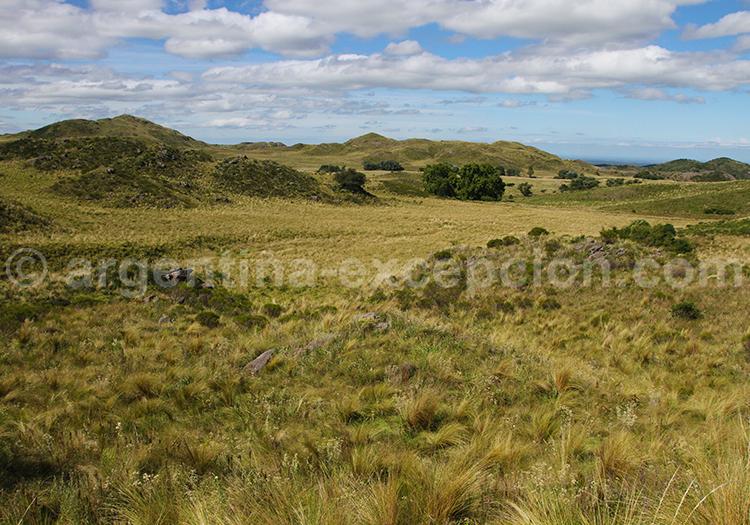 Ongamira, Pampa & Sierra