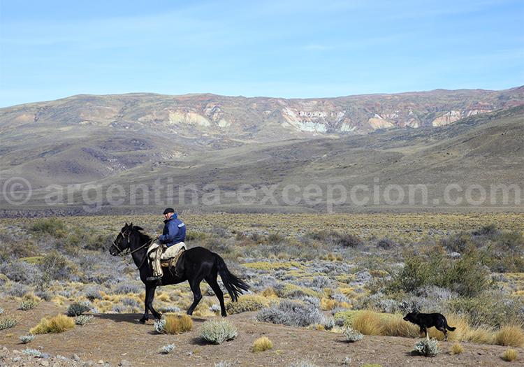 Gaucho, Patagonie Argentine