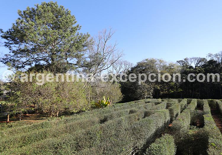 Labyrinthe Végétal de Montecarlo