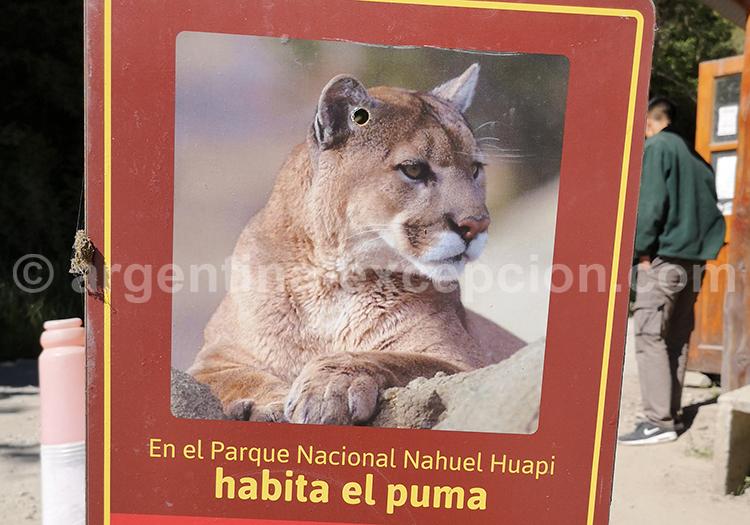 Parc Nahuel Huapi, Argentine