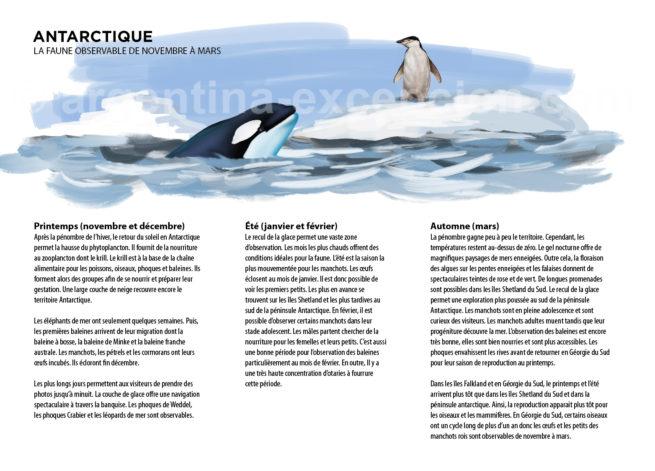 Faune d'Antarctique d'Argentine avec Argentina Excepción