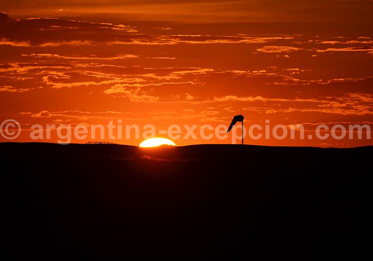 Coucher soleil Rincon Chico avec Argentina Excepción