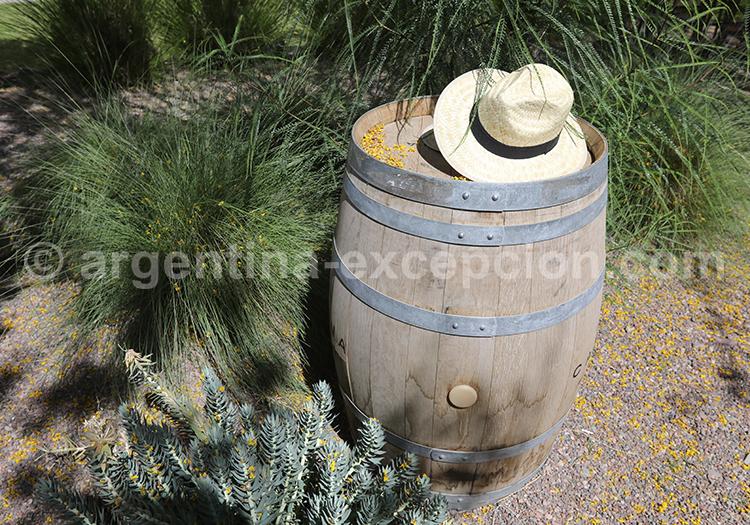 Route des vins argentins, Argentine avec l'agence de voyage Argentina Excepción