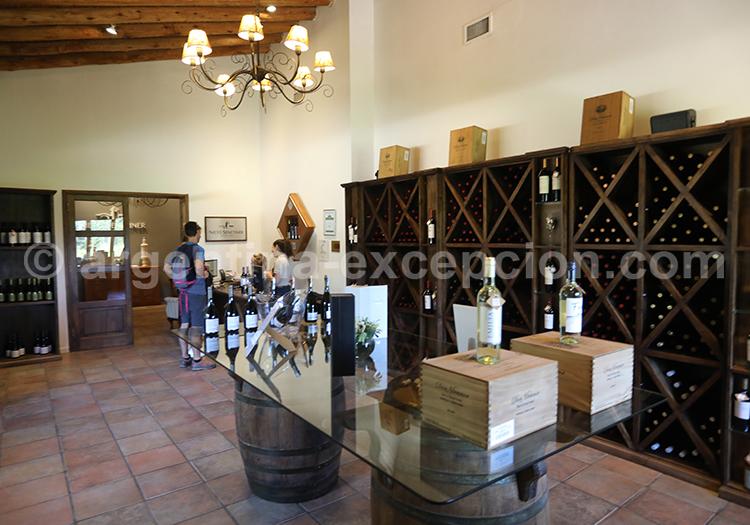 Déguster les vins argentins dans la région de Mendoza, Luján de Cuyo avec l'agence de voyage Argentina Excepción