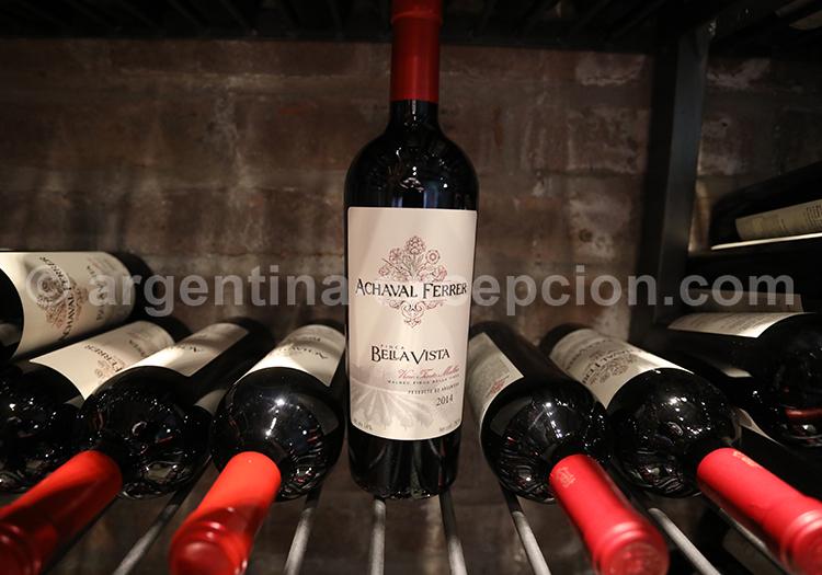 Les vignes de la bodega Achaval Ferrer, Mendoza avec l'agence de voyage Argentina Excepción