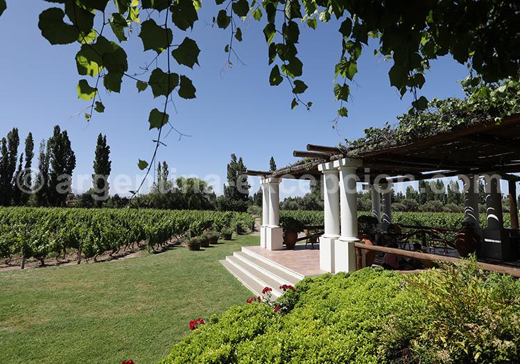 Nieto Senetiner, producteur de vin en Argentine avec l'agence de voyage Argentina Excepción