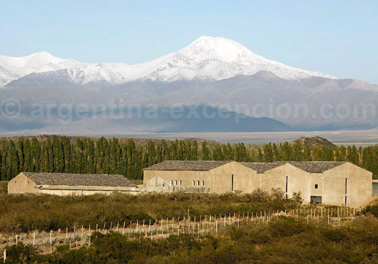Visiter la bodega Atamisque, Vallée de Uco, Argentine avec l'agence de voyage Argentina Excepción
