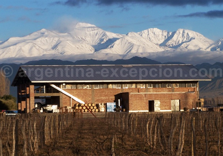Visiter la bodega Achaval Ferrer, Luján de Cuyo, Argentine avec l'agence de voyage Argentina Excepción