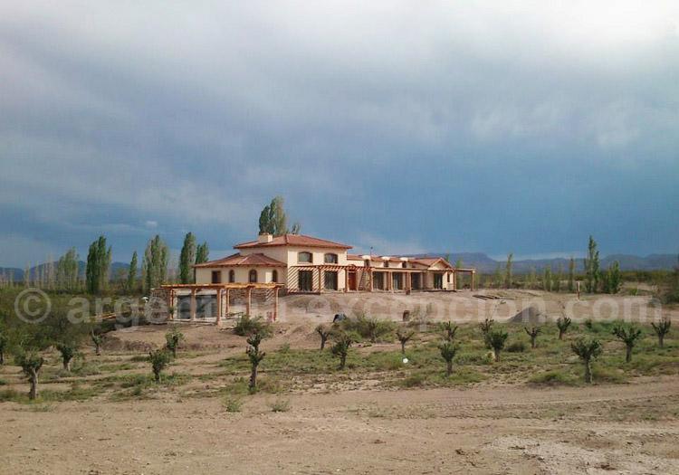 Visiter la bodega Algodon Wine Estates, San Rafael, Argentine avec l'agence de voyage Argentina Excepción