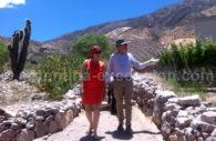 Visiter la bodega Dupont, Maimara, Humahuaca, Argentine
