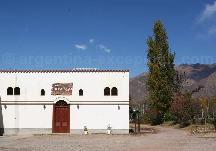 Visiter la bodega Domingo Hermanos, Cafayate, Argentine avec l'agence de voyage Argentina Excepción