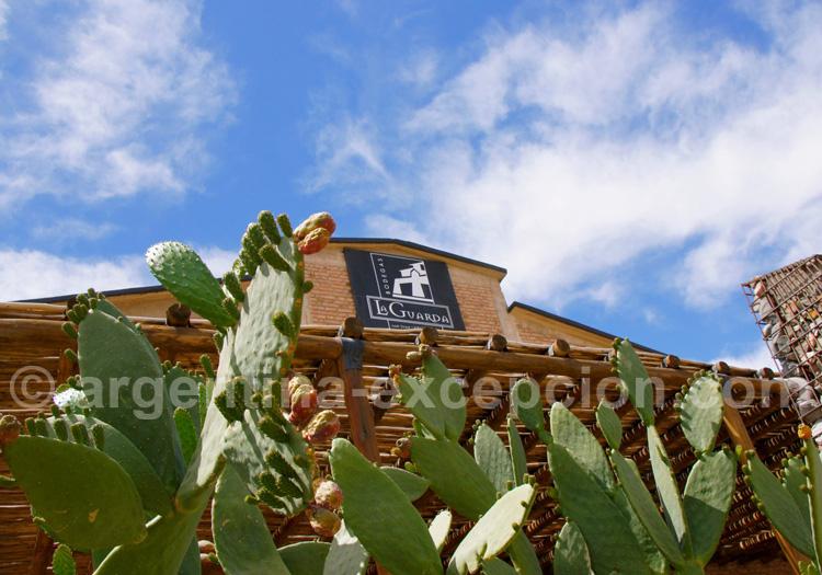 Visiter la bodega La Guarda, San Juan, Argentine avec l'agence de voyage Argentina Excepción