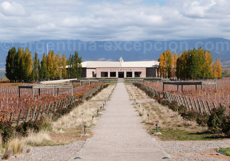 Visiter la bodega Salentein, vallée de Uco, Argentine avec l'agence de voyage Argentina Excepción