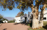 Visiter la bodega La Banda, vallées Calchaquies, Argentine