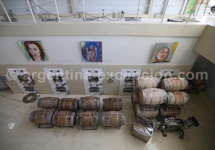 Dégustation de vin argentin, Mendoza, bodega Matervini avec l'agence de voyage Argentina Excepción