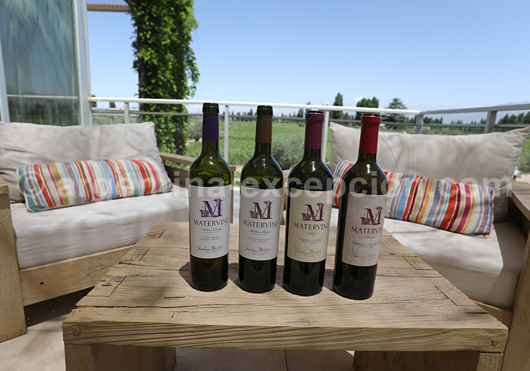Déguster le vin de la bodega Matervini avec l'agence de voyage Argentina Excepción
