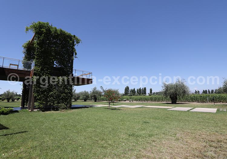 Bodega Matervini, Luján de Cuyo, Argentine avec l'agence de voyage Argentina Excepción