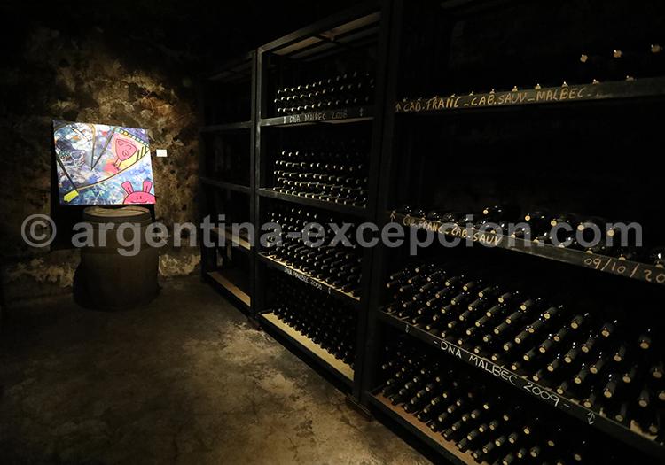 Producteurs de vins argentins, bodega Casarena avec l'agence de voyage Argentina Excepción