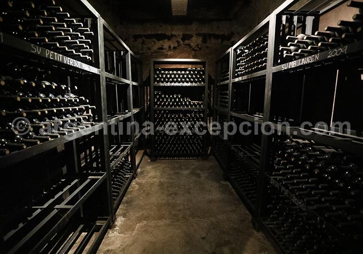Vignobles de Luján de Cuyo, Argentine avec l'agence de voyage Argentina Excepción