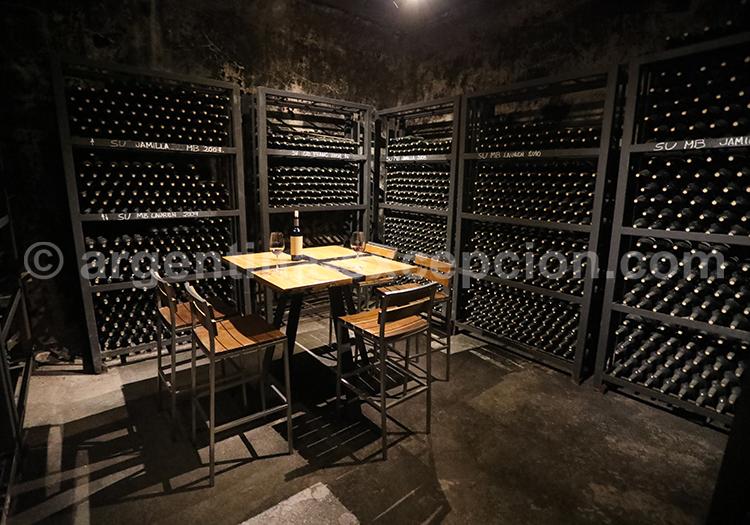 La route du vin argentin, Mendoza et bodega Casarena avec l'agence de voyage Argentina Excepción