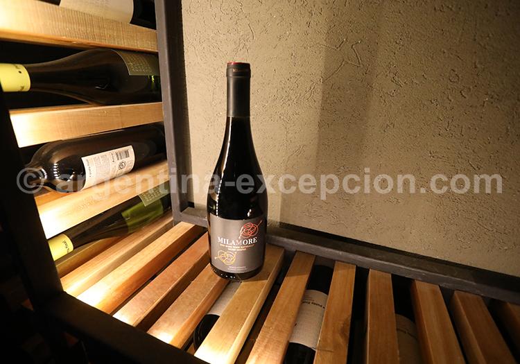 Domaine viticole Renacer, Mendoza avec l'agence de voyage Argentina Excepción