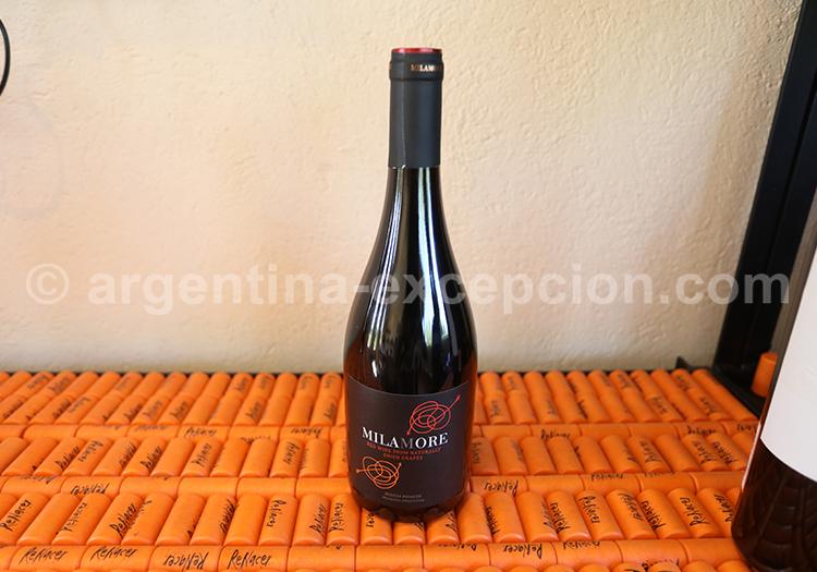 Domaine viticole Renacer, Argentine avec l'agence de voyage Argentina Excepción