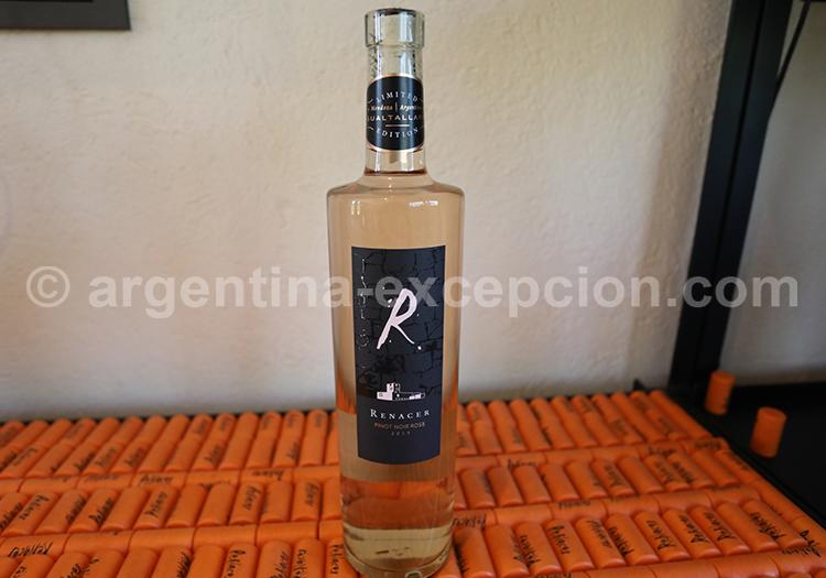Bodega argentine, Renacer, vin argentin avec l'agence de voyage Argentina Excepción
