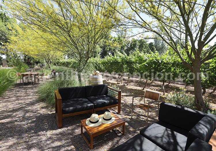 Malbec bodega Casarena, production de vins argentins avec l'agence de voyage Argentina Excepción