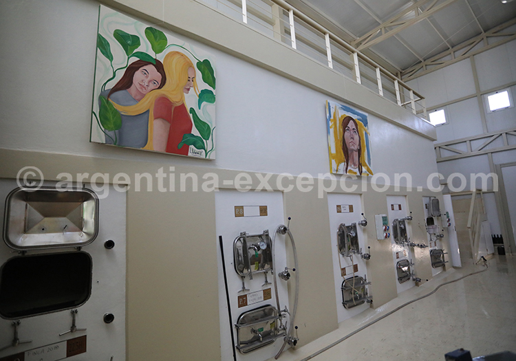 Visiter la bodega Matervini, Mendoza, Argentine avec l'agence de voyage Argentina Excepción
