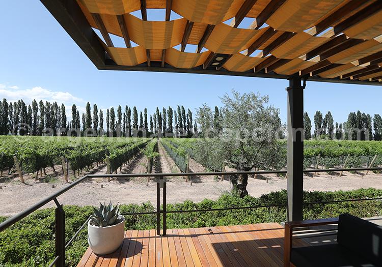 Terrasse de la bodega Casarena, Luján de Cuyo, Argentine avec l'agence de voyage Argentina Excepción
