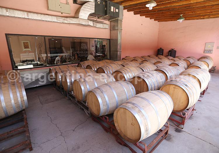 Dégustation de vin argentin, luján de Cuyo, bodega Clos de Chacras avec l'agence de voyage Argentina Excepción