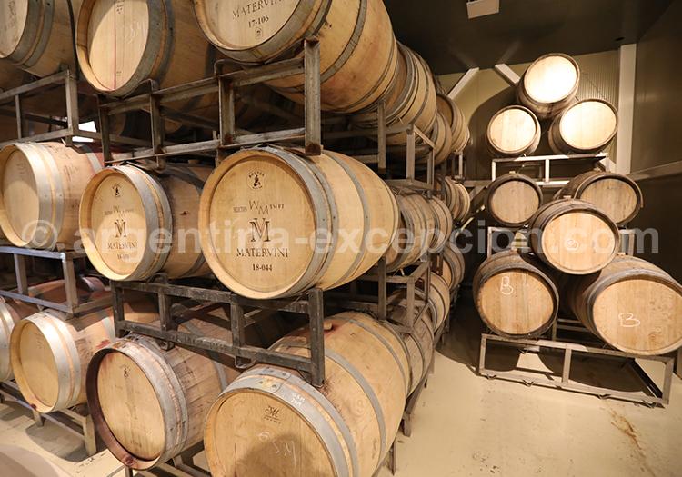 Dégustation de vin argentin, Luján de Cuyo, bodega Matervini avec l'agence de voyage Argentina Excepción
