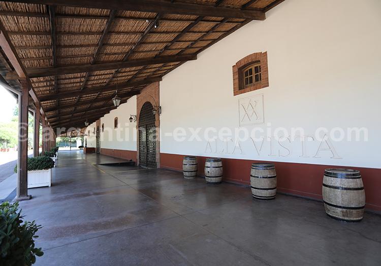 Que voir dans la région de Mendoza, Cuyo, Argentine avec l'agence de voyage Argentina Excepción