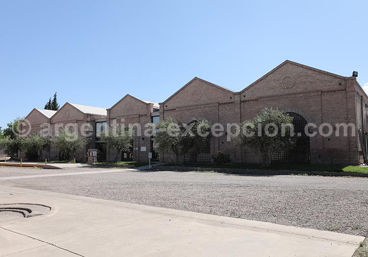 Pourquoi visiter la bodega Alta Vista dans la région de Mendoza avec l'agence de voyage Argentina Excepción