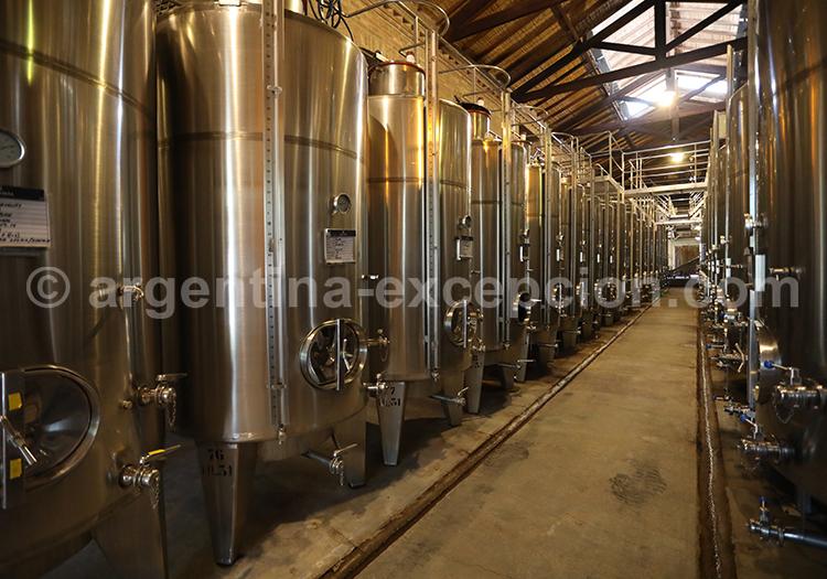 Découvrir le vin argentin dans la bodega Alta Vista dans la région de Mendoza avec l'agence de voyage Argentina Excepción