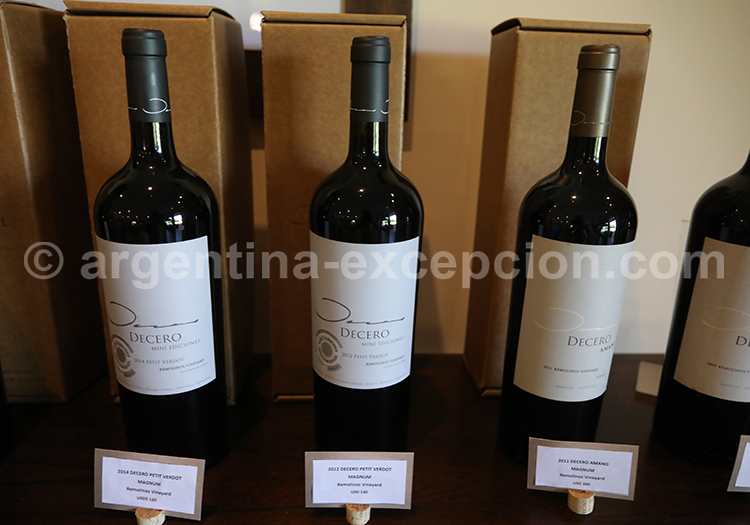 Découvrir le vin de la bodega Decero, Cuyo, Argentine avec l'agence de voyage Argentina Excepción