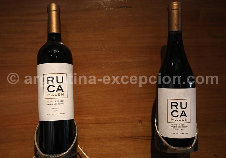 Déguster le vin argentin à la bodega Ruca Malen, Argentine avec l'agence de voyage Argentina Excepción